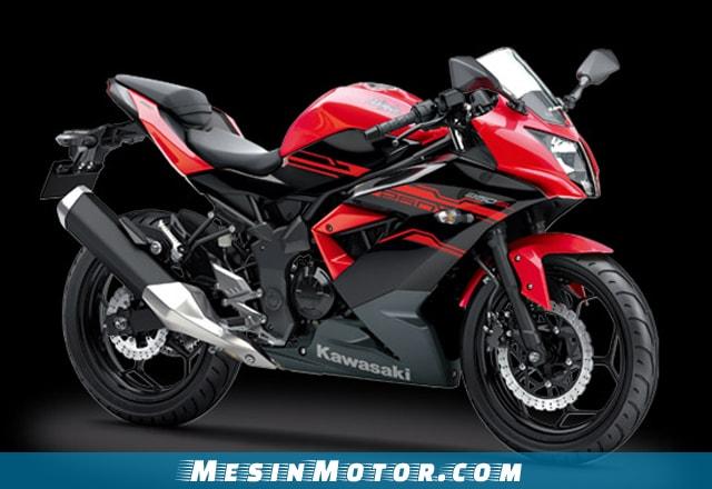 Motor Sport 250cc Kawasaki Ninja 250SL