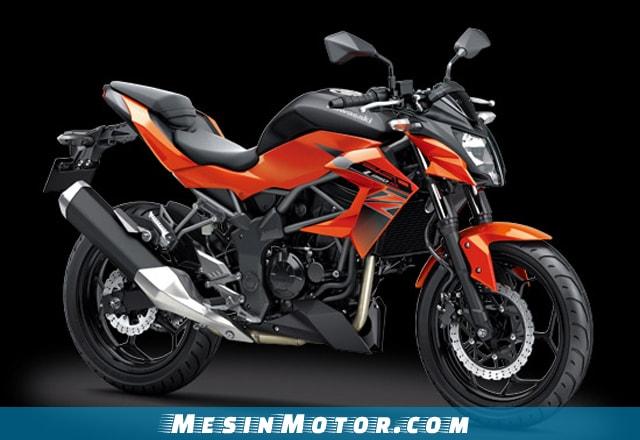 Motor Sport 250cc Kawasaki Z250 ABS