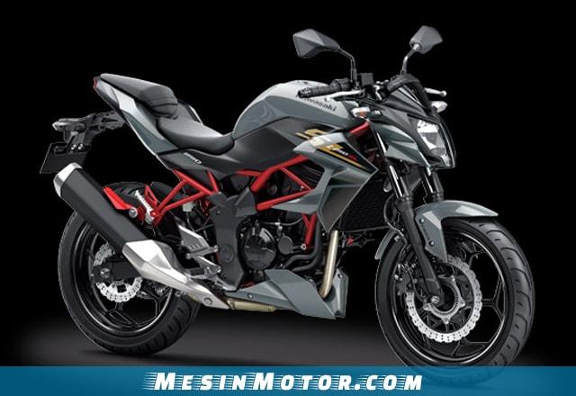 Motor Sport 250cc Kawasaki Z250SL ABS