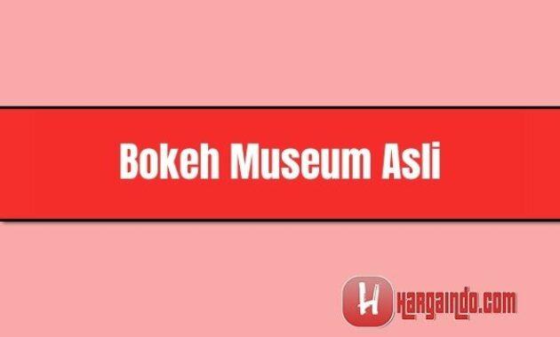 bokeh museum asli