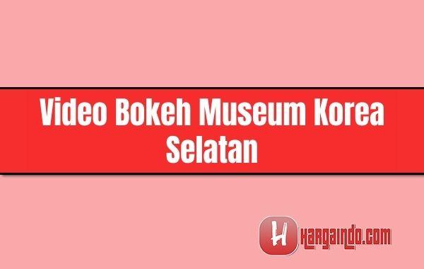 video bokeh museum korea selatan