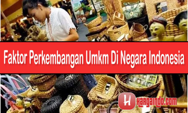 Faktor Perkembangan UMKM di Negara Indonesia